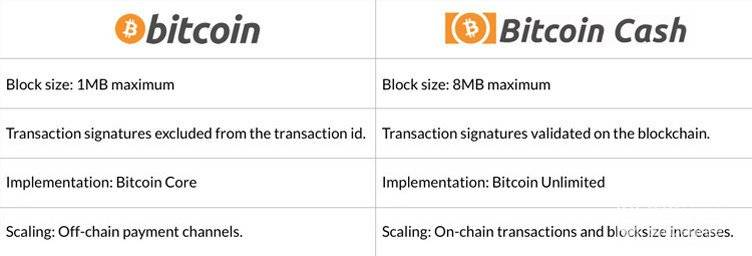 What is Bitcoin Cash: Comparison of Bitcoin and Bitcoin Cash.