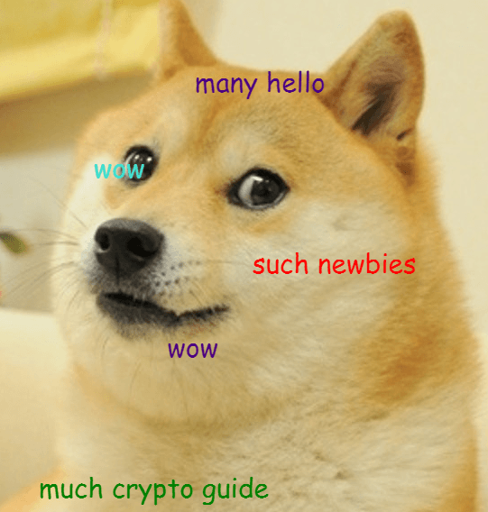What is Dogecoin: a Doge meme.