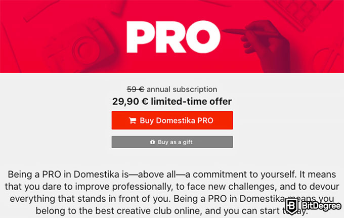 Domestika review: PRO membership.