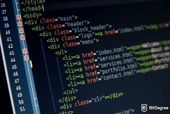 What is a web developer: HTML code
