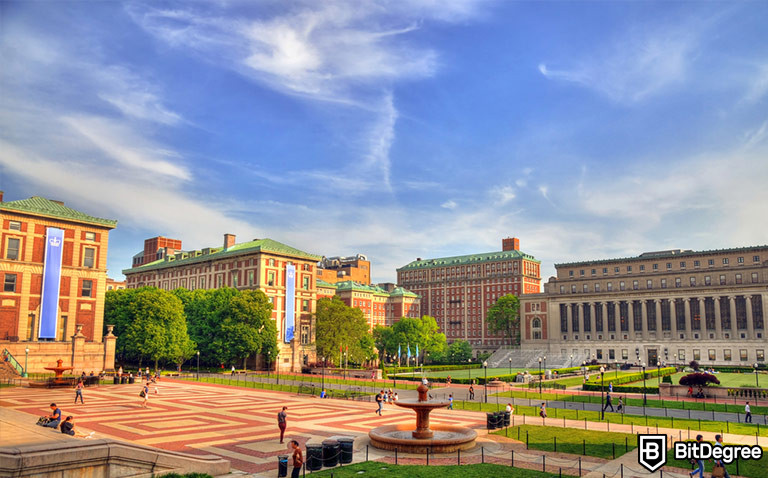 Best Ivy League Online Courses: Find Them Here