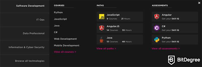 Pluralsight review: Pluralsight courses.