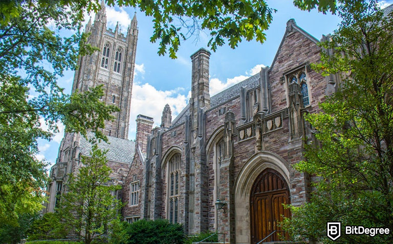 Best Princeton University Online Courses: Suited for Different Needs