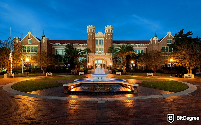 UF Online Courses: 7 Noteworthy Classes